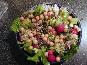 salade bonen vrij
