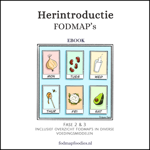 Coverebook_Herintro_A4-kader