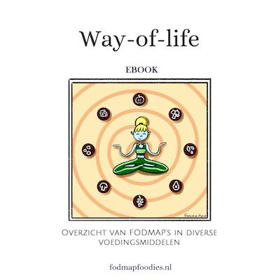 Coverebook_wayoflife_ebook